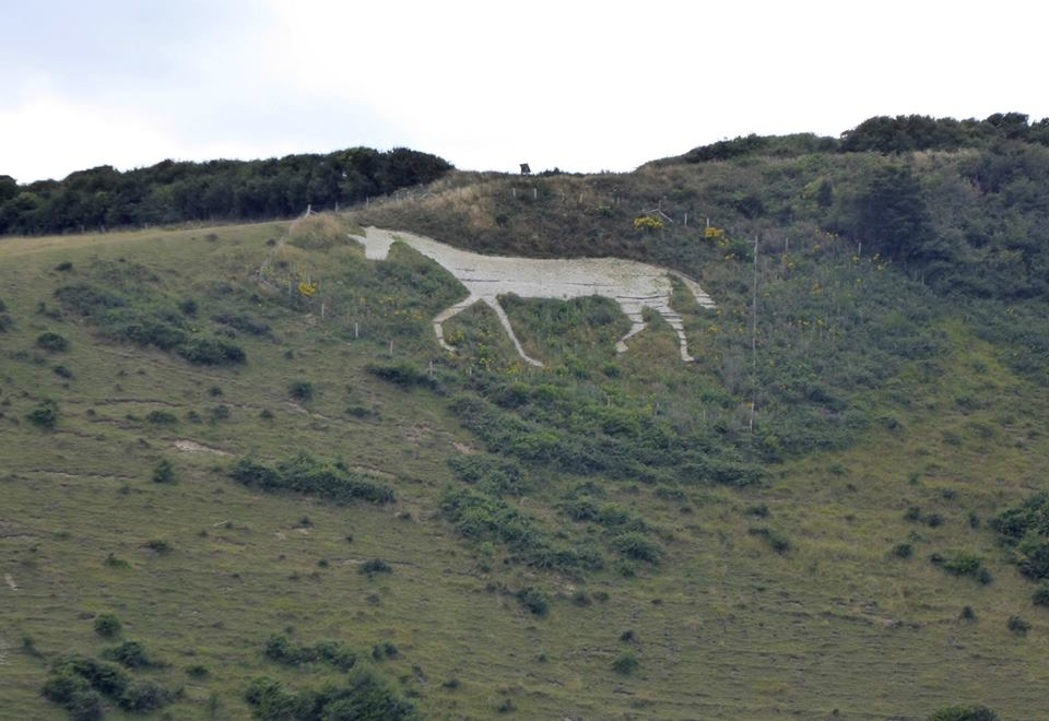 There be unicorns in them thar hills.
